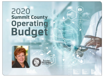 Image: 2020 budget cover